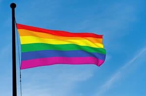 LGBTQ FLag (2)