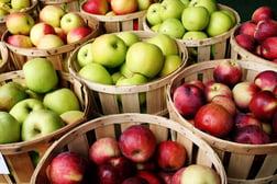 fertility fruit