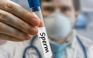 sperm-donation-bank